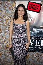 Celebrity Photo: Julia Louis Dreyfus 2386x3600   2.5 mb Viewed 4 times @BestEyeCandy.com Added 87 days ago