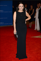 Celebrity Photo: Julia Louis Dreyfus 682x1024   156 kb Viewed 8 times @BestEyeCandy.com Added 29 days ago