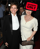Celebrity Photo: Julia Roberts 2436x3000   2.6 mb Viewed 1 time @BestEyeCandy.com Added 53 days ago