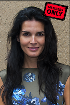 Celebrity Photo: Angie Harmon 2529x3800   1.8 mb Viewed 5 times @BestEyeCandy.com Added 47 days ago