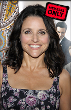 Celebrity Photo: Julia Louis Dreyfus 2342x3600   1.8 mb Viewed 5 times @BestEyeCandy.com Added 77 days ago