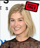 Celebrity Photo: Rosamund Pike 2545x3000   1,059 kb Viewed 5 times @BestEyeCandy.com Added 162 days ago