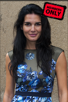 Celebrity Photo: Angie Harmon 2529x3800   2.0 mb Viewed 4 times @BestEyeCandy.com Added 47 days ago