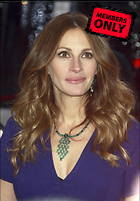Celebrity Photo: Julia Roberts 2723x3900   1.1 mb Viewed 1 time @BestEyeCandy.com Added 66 days ago