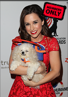 Celebrity Photo: Lacey Chabert 2528x3600   2.6 mb Viewed 0 times @BestEyeCandy.com Added 9 days ago