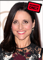 Celebrity Photo: Julia Louis Dreyfus 2058x2838   1.5 mb Viewed 1 time @BestEyeCandy.com Added 29 days ago