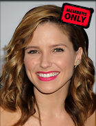 Celebrity Photo: Sophia Bush 2550x3358   1.3 mb Viewed 0 times @BestEyeCandy.com Added 13 hours ago