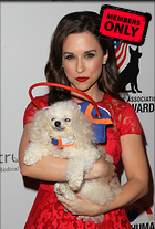 Celebrity Photo: Lacey Chabert 2431x3600   2.3 mb Viewed 0 times @BestEyeCandy.com Added 14 days ago