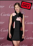 Celebrity Photo: Rosamund Pike 2550x3571   1.1 mb Viewed 1 time @BestEyeCandy.com Added 2 days ago