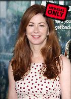 Celebrity Photo: Dana Delany 2188x3016   1.4 mb Viewed 5 times @BestEyeCandy.com Added 252 days ago