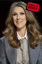 Celebrity Photo: Celine Dion 2304x3456   1.2 mb Viewed 2 times @BestEyeCandy.com Added 191 days ago
