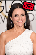 Celebrity Photo: Julia Louis Dreyfus 2164x3256   2.0 mb Viewed 1 time @BestEyeCandy.com Added 34 days ago