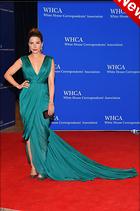 Celebrity Photo: Sophia Bush 680x1024   170 kb Viewed 15 times @BestEyeCandy.com Added 4 days ago