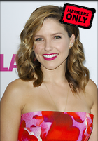 Celebrity Photo: Sophia Bush 3247x4659   1.6 mb Viewed 0 times @BestEyeCandy.com Added 13 hours ago