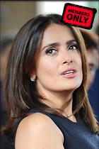 Celebrity Photo: Salma Hayek 2400x3600   1,013 kb Viewed 1 time @BestEyeCandy.com Added 8 days ago