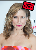 Celebrity Photo: Sophia Bush 2175x3000   1.4 mb Viewed 0 times @BestEyeCandy.com Added 13 hours ago