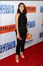 Celebrity Photo: Marisa Tomei 2400x3685   742 kb Viewed 40 times @BestEyeCandy.com Added 28 days ago