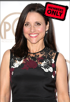 Celebrity Photo: Julia Louis Dreyfus 3048x4434   2.7 mb Viewed 1 time @BestEyeCandy.com Added 29 days ago