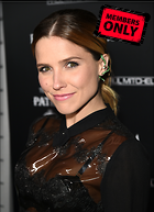 Celebrity Photo: Sophia Bush 2172x3000   1,047 kb Viewed 1 time @BestEyeCandy.com Added 6 days ago