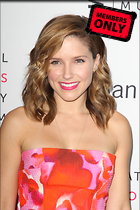 Celebrity Photo: Sophia Bush 1600x2400   2.0 mb Viewed 0 times @BestEyeCandy.com Added 13 hours ago