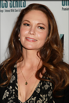 Celebrity Photo: Diane Lane 2100x3150   801 kb Viewed 114 times @BestEyeCandy.com Added 88 days ago
