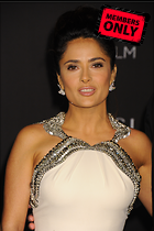 Celebrity Photo: Salma Hayek 2832x4256   5.1 mb Viewed 1 time @BestEyeCandy.com Added 4 days ago