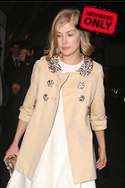 Celebrity Photo: Rosamund Pike 2400x3600   1,054 kb Viewed 4 times @BestEyeCandy.com Added 7 days ago