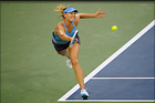 Celebrity Photo: Maria Sharapova 3000x1996   240 kb Viewed 13 times @BestEyeCandy.com Added 25 days ago