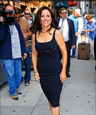 Celebrity Photo: Julia Louis Dreyfus 403x480   65 kb Viewed 48 times @BestEyeCandy.com Added 45 days ago