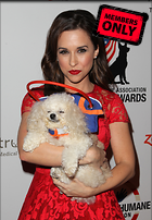 Celebrity Photo: Lacey Chabert 2490x3600   2.4 mb Viewed 0 times @BestEyeCandy.com Added 18 days ago