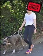 Celebrity Photo: Sophia Bush 2400x3150   1,024 kb Viewed 4 times @BestEyeCandy.com Added 21 days ago
