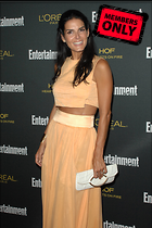 Celebrity Photo: Angie Harmon 2400x3600   1.4 mb Viewed 1 time @BestEyeCandy.com Added 73 days ago