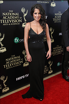 Celebrity Photo: Kelly Monaco 1040x1560   159 kb Viewed 23 times @BestEyeCandy.com Added 92 days ago