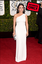 Celebrity Photo: Julia Louis Dreyfus 2062x3101   2.1 mb Viewed 0 times @BestEyeCandy.com Added 34 days ago