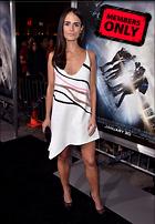 Celebrity Photo: Jordana Brewster 3071x4436   3.3 mb Viewed 2 times @BestEyeCandy.com Added 27 days ago
