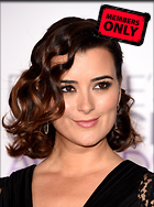 Celebrity Photo: Cote De Pablo 1812x2428   1.3 mb Viewed 1 time @BestEyeCandy.com Added 7 days ago