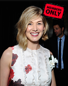 Celebrity Photo: Rosamund Pike 2480x3120   2.0 mb Viewed 4 times @BestEyeCandy.com Added 25 days ago