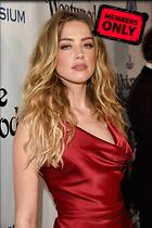 Celebrity Photo: Amber Heard 2360x3540   2.6 mb Viewed 1 time @BestEyeCandy.com Added 7 days ago