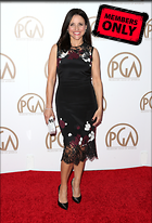 Celebrity Photo: Julia Louis Dreyfus 2886x4242   3.4 mb Viewed 1 time @BestEyeCandy.com Added 29 days ago