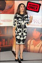 Celebrity Photo: Salma Hayek 2329x3500   1.6 mb Viewed 0 times @BestEyeCandy.com Added 25 hours ago