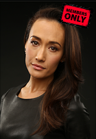 Celebrity Photo: Maggie Q 1930x2798   1,099 kb Viewed 2 times @BestEyeCandy.com Added 156 days ago