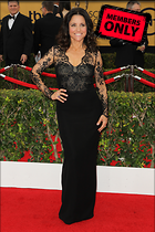 Celebrity Photo: Julia Louis Dreyfus 1365x2048   1.3 mb Viewed 0 times @BestEyeCandy.com Added 29 days ago